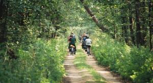 Familienfreundliche Tour - Polen und Weißrussland: Im Wald der Wisente - individuell