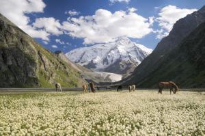 Kasachstan - Kirgistan