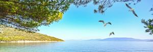 Kreuzfahrt (Rad & Schiff) - Motorsegler/-yacht: Kroatien