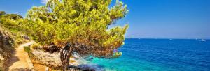 Kreuzfahrt - Motorsegler/-yacht: Kroatien ab/bis Rijeka