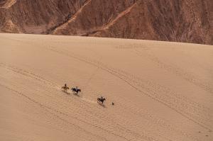Mongolei  -  auf den Spuren des Dschingis Khan