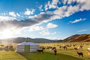 Mongolei: Höhepunkte