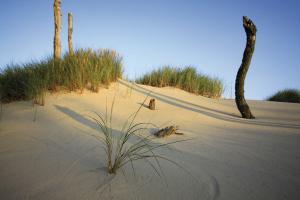 Radwandern an Polens Ostseeküste