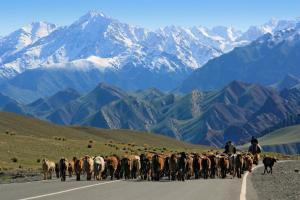 Tadschikistan - Kirgistan - Natur pur entlang des Pamir Highway mit Exkursion zum Zorkul-See